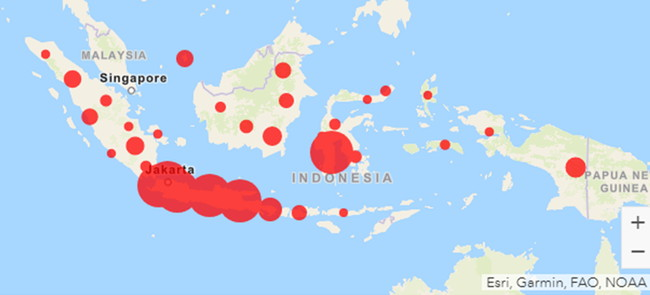 Corona Virus Disease 2019 Covid 19 In Indonesia Sakura Science Plan